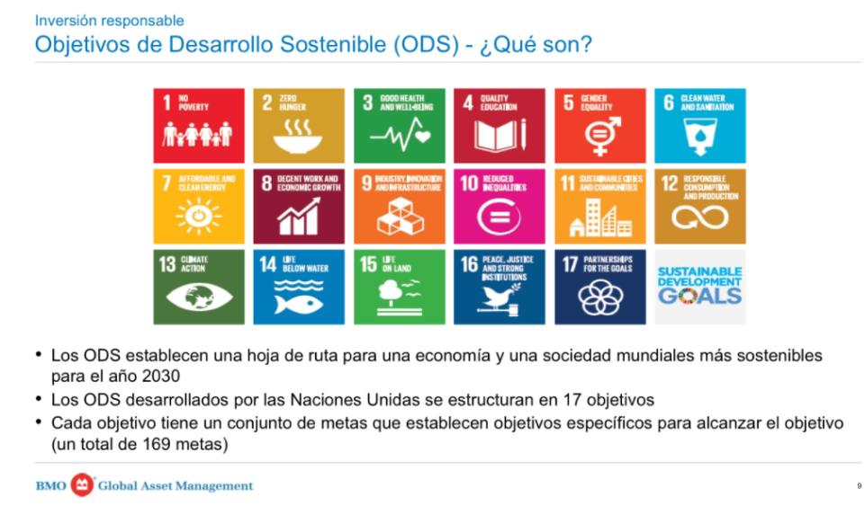 Diapositiva de la presentación empleada por Luis Martín durante el streaming que explica qué son los objetivos de desarrollo sostenible (ODS)